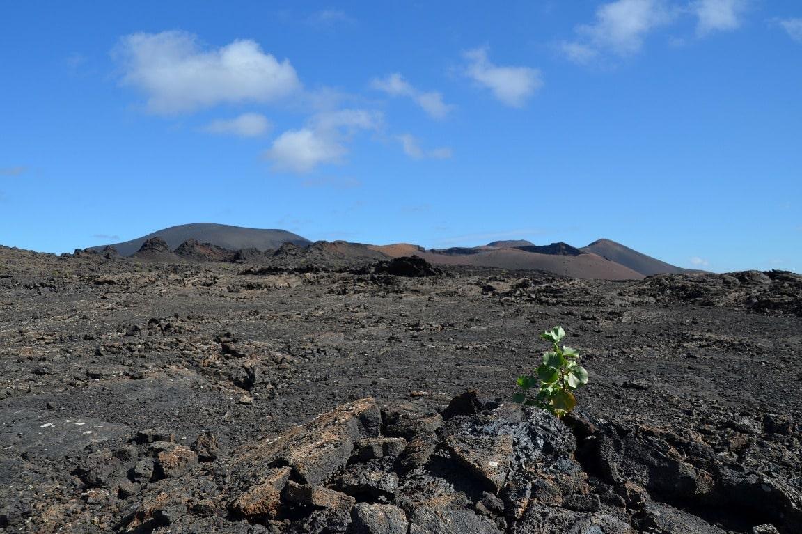 Долина вулканов местами напоминает необитаемую планету