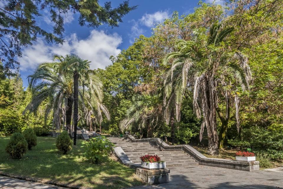Сочи – территория тропиков