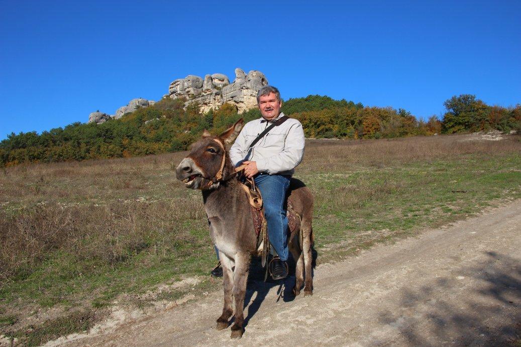 Осел – лучший транспорт для путешествий по Крыму