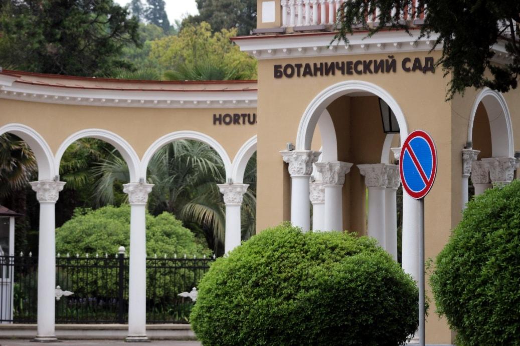 Ботанический сад находится в центре Сухума