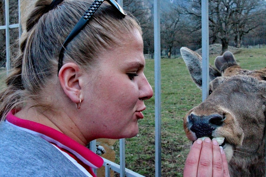 Зоопарк в Тебердинском биосферном заповеднике
