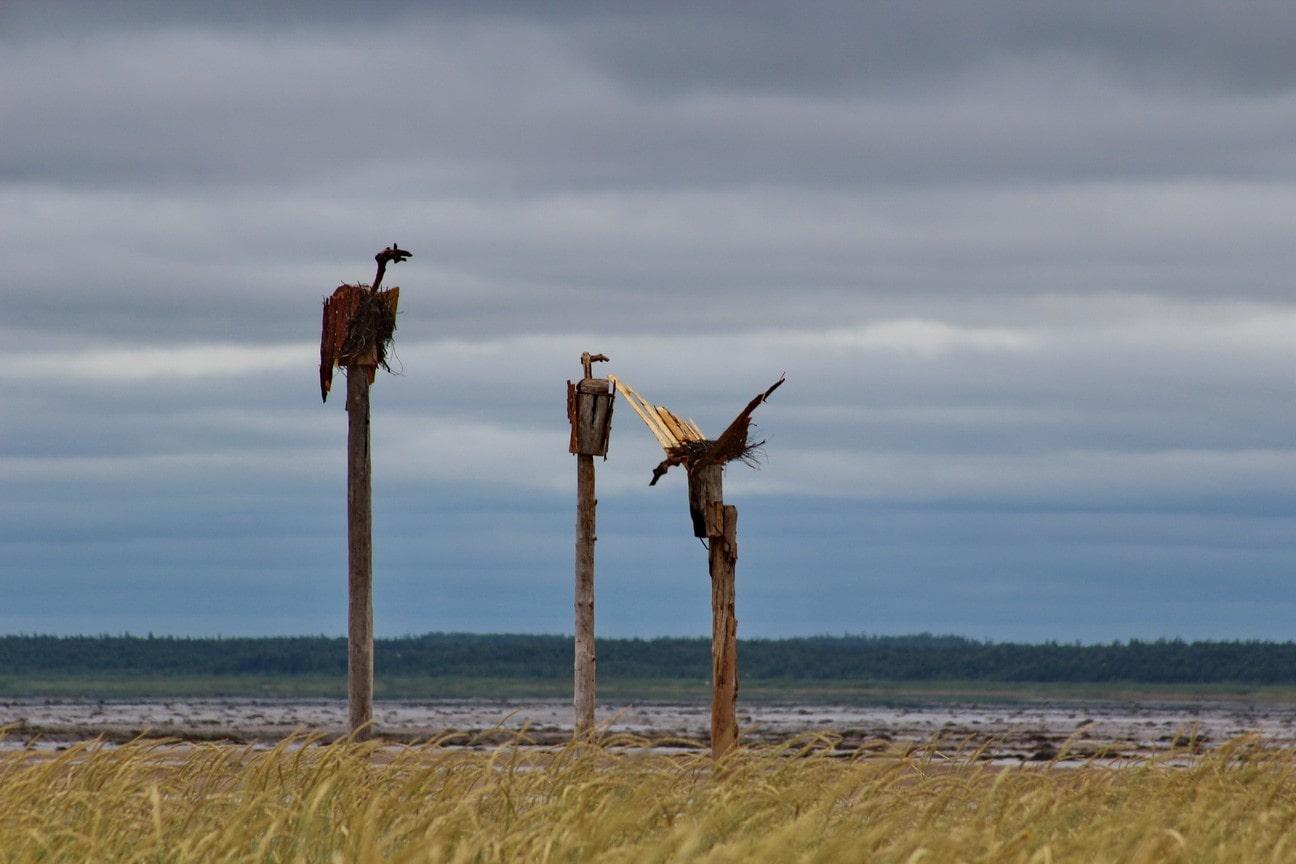 На острове много забавных скульптур из дерева