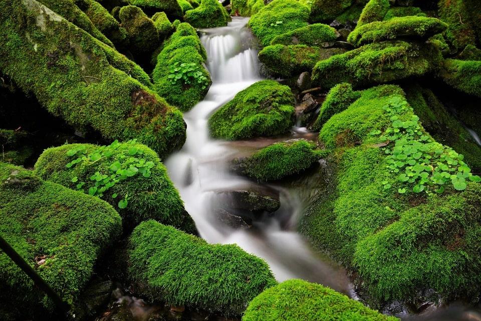 Водопады – визитная карточка Каменномостского