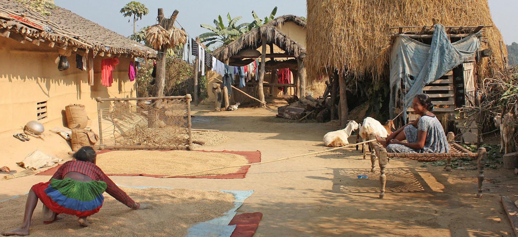 Деревня тхару