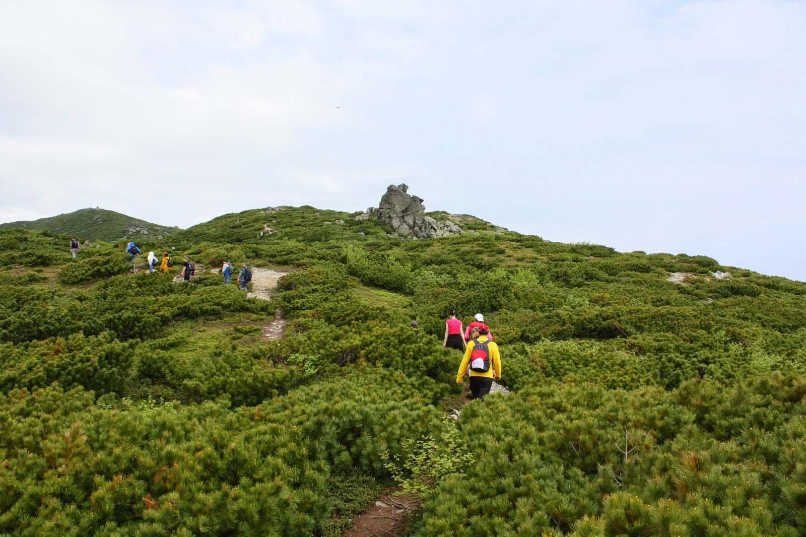 На вершину горы ведет оборудованная тропа