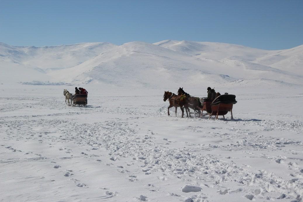На снегоходе хорошо, а на лошади лучше