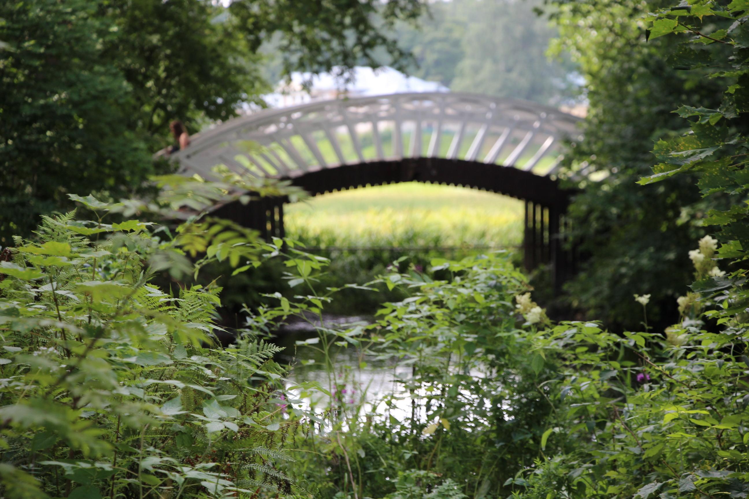 Китайский мостик