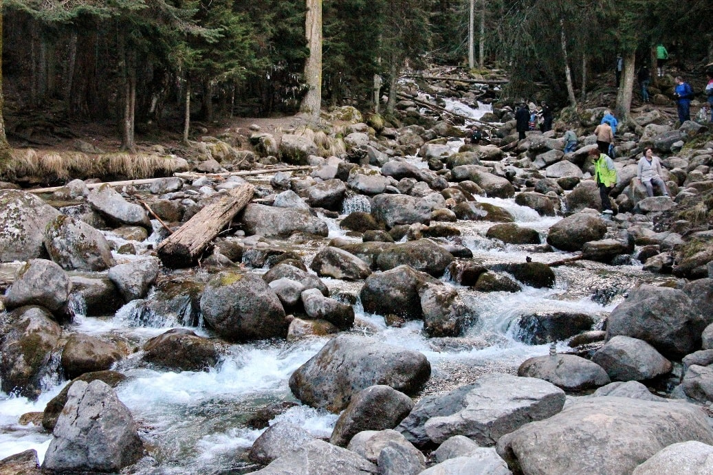Река Шумка