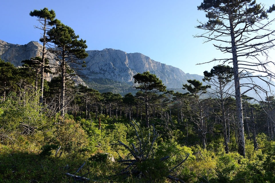 Горы в окрестностях Симеиза