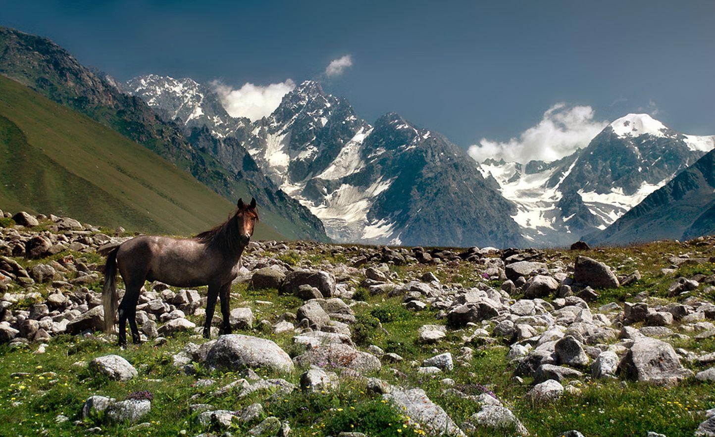 Национальный парк «Алания»