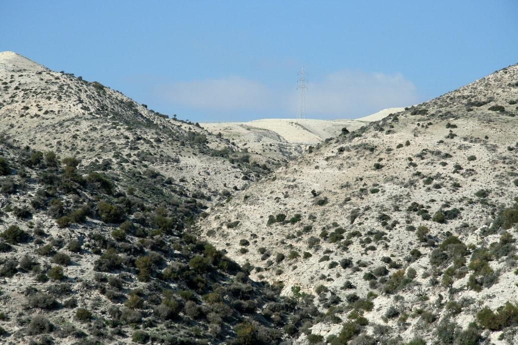 Трудно поверить, что в древности Кипр был покрыт густыми лесами