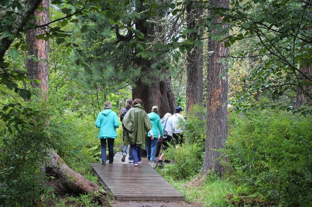 Туристам предлагают походы и экскурсии по живописным местам