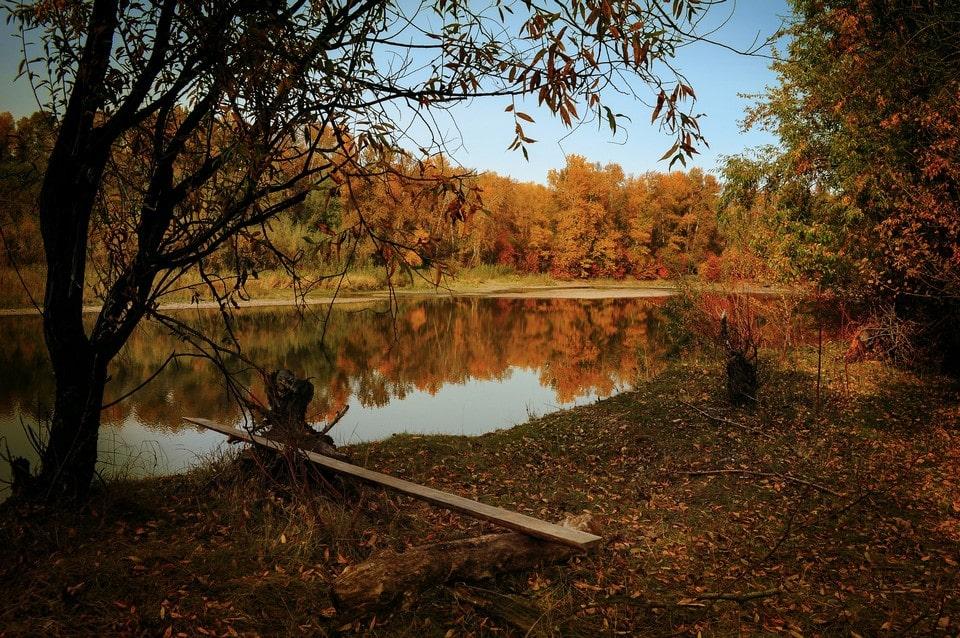 Особенно живописно пруд выглядит осенью