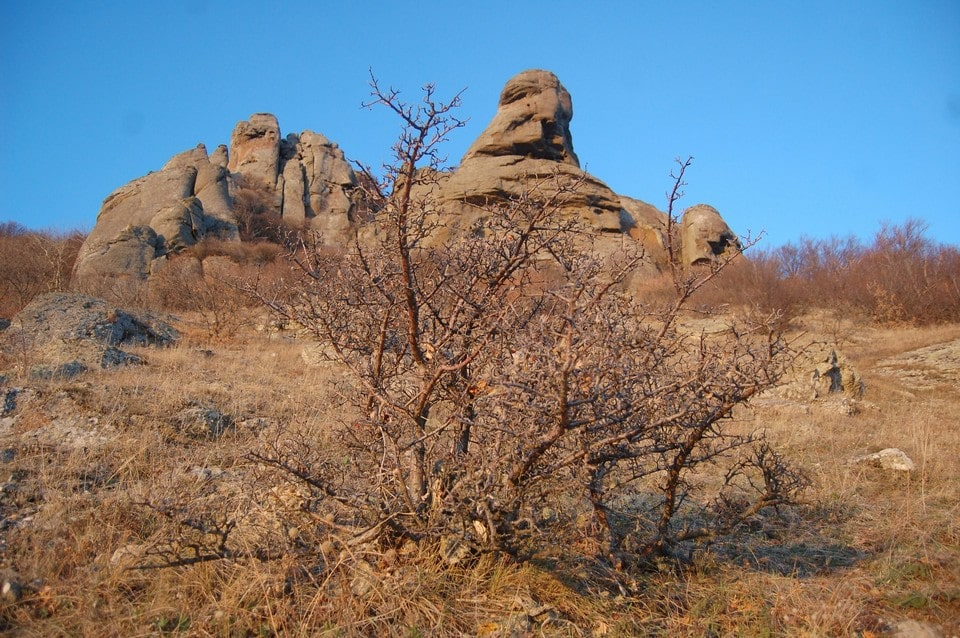 Неподалеку от Алушты находится галерея каменных «скульптур»