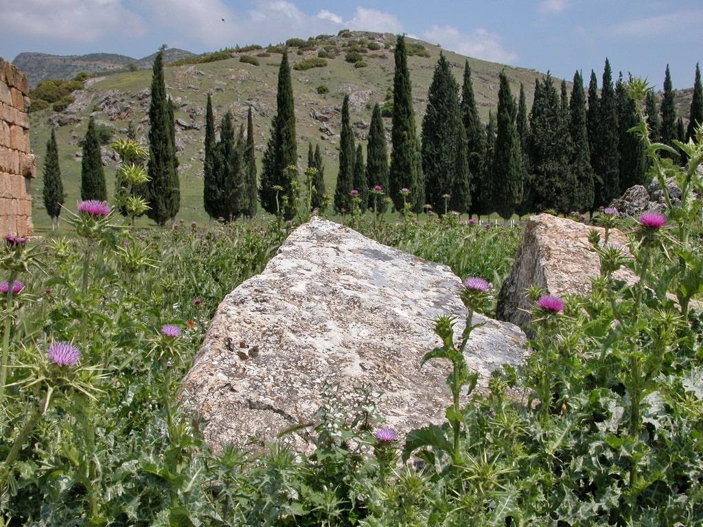 С севера город защищают Таврские горы