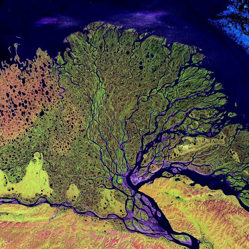 Так выглядит дельта Лены
