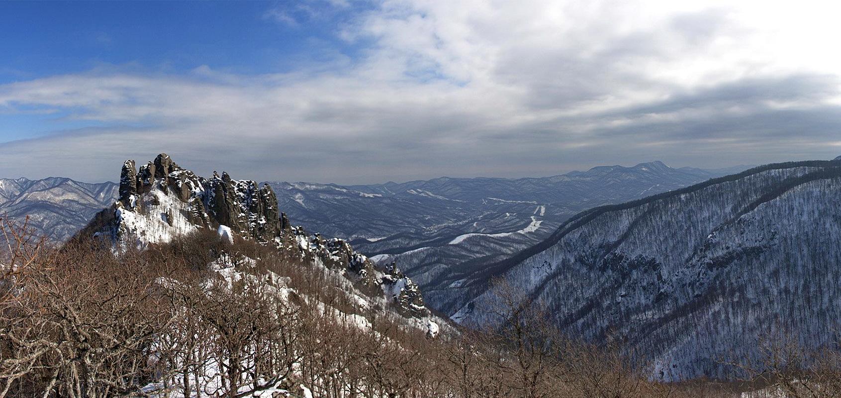 Индюк зимой