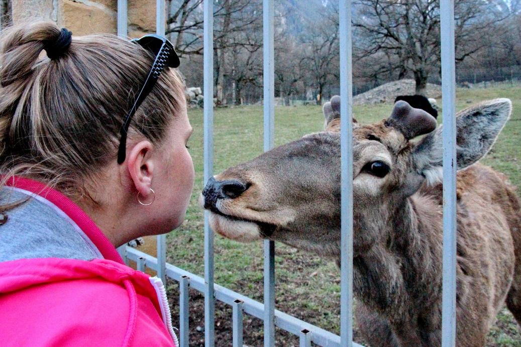 Зоопарк в Тебердинском заповеднике