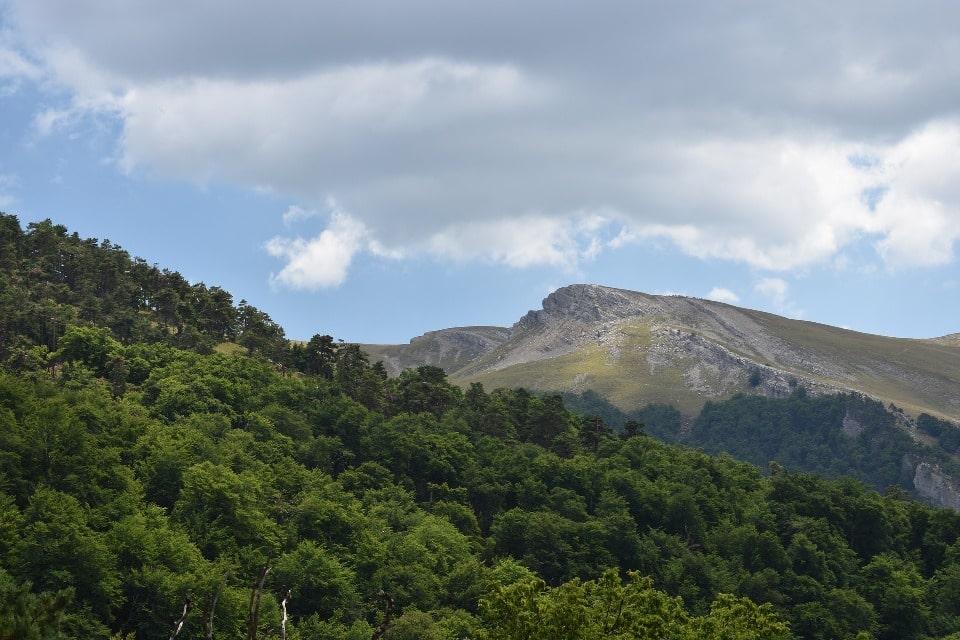 Перевал расположен на высоте 700 метров над уровнем моря