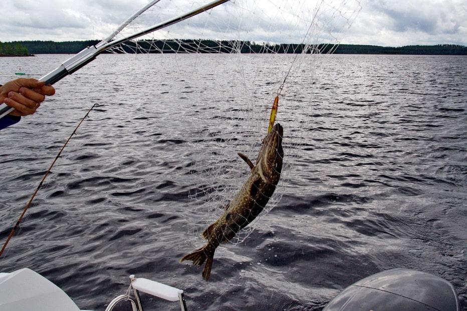 Рыбалка на Ловозере