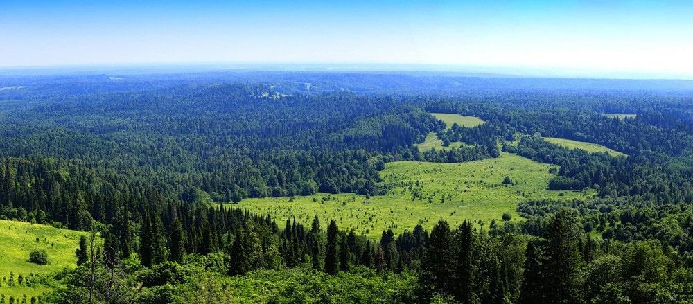 Плато находится на территории Печоро-Илычского заповедника