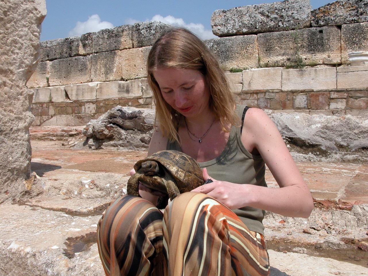 Среди древних руин ползают столь же древние черепахи