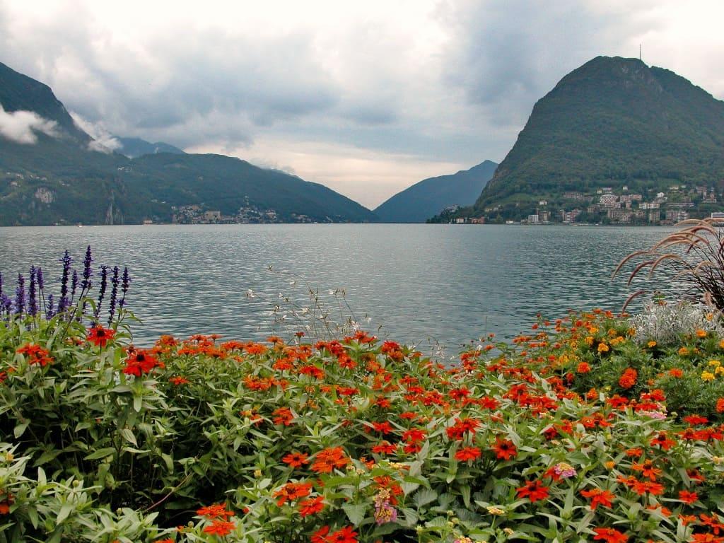 Берега озера покрыты пышной растительностью
