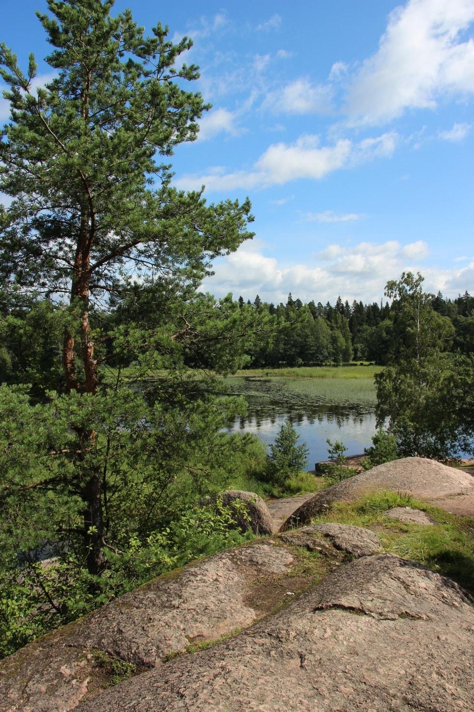Типичный ландшафт Карельского перешейка