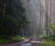 Велопоход - из Конаково в Тверь - Тверская область