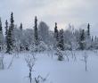 Лыжный спортивный поход 2-й категории сложности по Хибинам