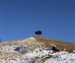 Новогодние праздники в горах Чечни и Ингушетии. Автотур с размещением в гостиницах