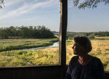 Дания, Хёрвайн – следуя руническим камням. Паломнический путь по Дании