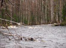 Сплав по реке Лойомоле