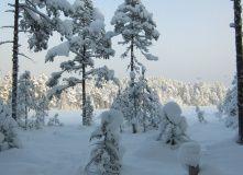 Сев-Запад, Лыжная сказка реки Смородинки