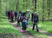 Подмосковье, Приключенческий семейный поход - Юные туристы