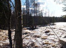 Сплав по рекам Лоймола