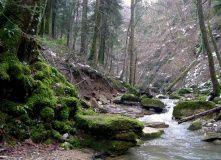 Кавказ, Горячий Ключ - прогулки и оздоравливающий отдых [Кавказ]