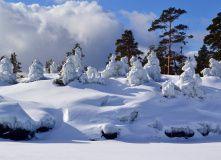 Карелия, Зимнее очарование Ладожских шхер (с трансфером)