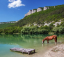 Крым, Этот удивительный Крым (актив + комфорт с проживанием в отеле на море)