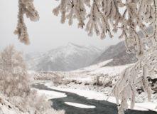 Алтай, Зимний Горный Алтай: большой фототур (разведка)