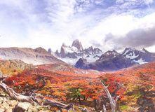 Центральная и Южная Америка, Патагония – жемчужина Южной Америки
