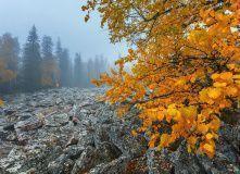 Урал, Осенняя сказка Таганая (Проживание в домиках)