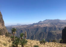Эфиопия, Трекинг по Эфиопии с восхождением на Рас-Дашен 4550 м