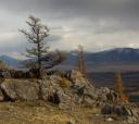 Алтай, Путешествие в осенний Алтай, автотур