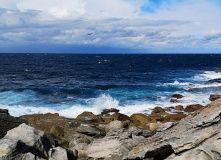 Австралия и Н.Зеландия, Увлекательное путешествие по Австралии с юга на север