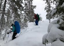Финляндия, Национальный парк Repovesi (пеший/лыжный поход с ночевками в теплом чуме)