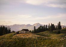 Абхазия, По вершинам Абхазии (плато Арабика)