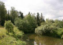 Подмосковье, Сплав по реке Воря с походной баней на берегу