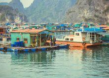 Плавучая деревня в прибрежных водах острова Кат Ба