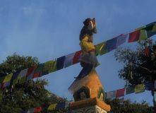 Непал, Мультитур по Непалу. Новогодняя программа